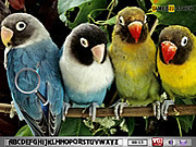 Игра Найти предметы - Попугай