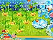 Игра Предъявите иск томатной фабрике